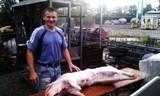 Bauer mit 35kg Schwein