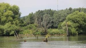 Donau Impression