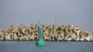 Constanza Hafen
