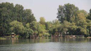 Ufer Donau