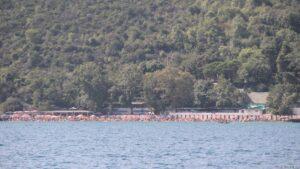 Bosporus_00011