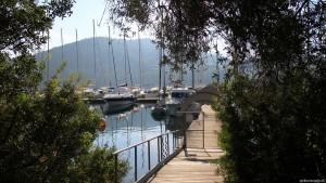 Steg Global Sailing